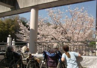 外出が困難な方もどなたでも春の訪れを感じて頂くため、当苑外庭にある満開の桜でお花見しながらの『お花見カフェ』を特別イベントとして開催。 皆様、桜に勝る笑顔満開でお花見にスイーツ(クリームあんみつ等々)に満喫されました。