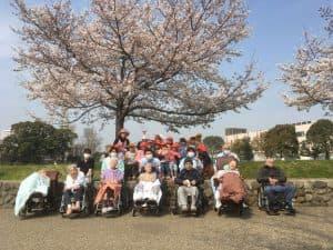 お花見に近隣の公園に外出しました。パイナップル保育園の子供たちもお散歩に来ており、一緒に記念撮影をしました。