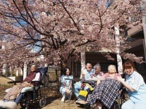 春の足音が聞こえてくると共に芙蓉苑の河津桜も満開になりました。 暖かい日だまりの中、ご入居者ご家族多くの皆さまに参加いただき桜の美しさに包まれて自然と笑顔溢れる楽しいお花見となりました。