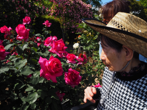 素敵なお花を見ながらの散策は、とても楽しいひと時になりました。